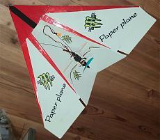 Paper Plane-my_pp.jpg