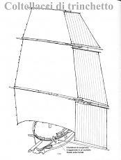 Vele e Alberi in generale-117.jpg