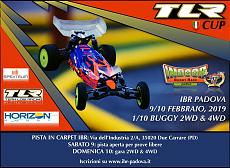 Fun Races 1:10 buggy su carpet - IBR Padova-img_5326.jpg