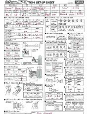 olio differenziali-setup-sheet-neobuggy-2016.jpg