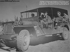 Jeep Willys Woody wagon su base Italeri 1/24-jeepmbgpw.aaf.stretchedaircrew.jpeg