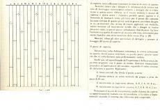 BOUNTY amati-post-159-121-post_6_913_ponte_fabio1.jpg