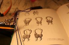 la caravella Santa Maria - disegni di Adametz-img_4913_1.jpg