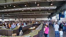 Aspettando Model Expo Italy - Verona 21/22 Maggio 2016-dsc05819.jpg