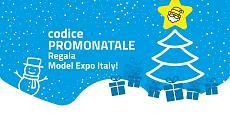 Model Expo Italy – Verona 7/8 Marzo 2020 – La fiera del modellismo-mei2020small.jpg