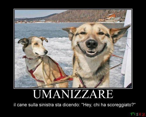 Immagini divertenti dal web forum for Immagini divertenti gratis per whatsapp