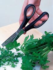 Per gli amanti dell'arte culinaria! la forbice a 5 lame!-forbice.jpg