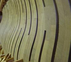 Il  74 CANNONI  di  Tiziano-p1010420-1-.jpg