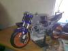 20022010005.jpg